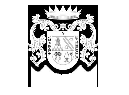 logo-ayuntamiento-alguazas